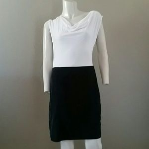 Ann Taylor loft dress small ivory black cap sleeve
